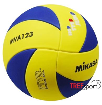 MVA123 (детаљније)